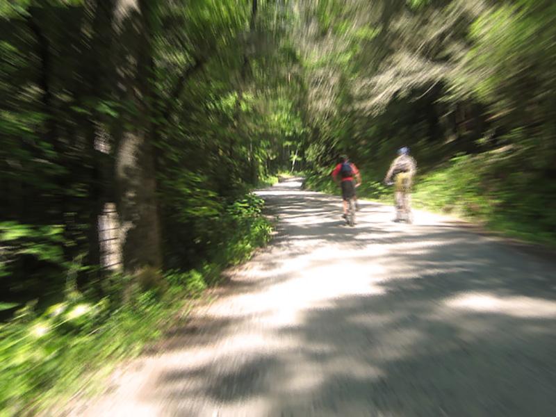 pisgah-mountain-biking-zoom2